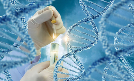 Genetic Counseling for Hereditary Cancers: Empowering Patients